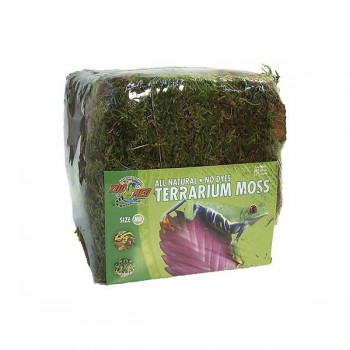 Mousse tropicale pour terrarium