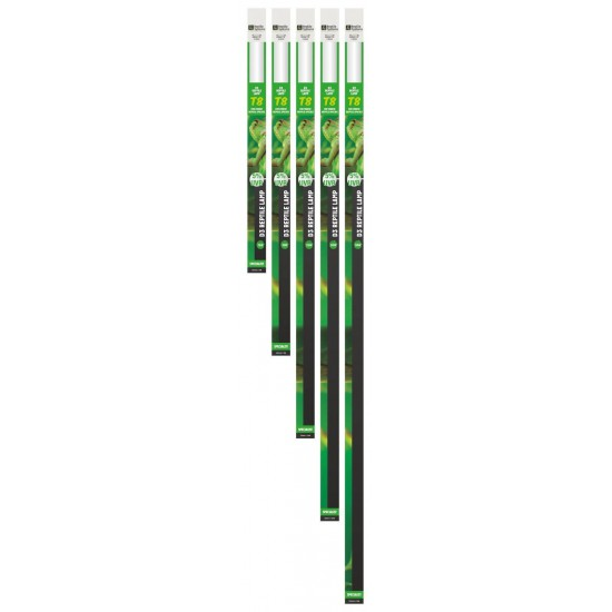 Tube fluorescent T8 5% UVB Reptile Systems