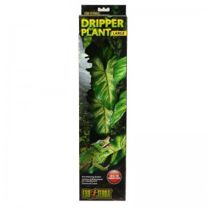Dripper Plant Large Exoterra