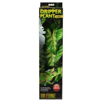 Dripper Plant Exoterra