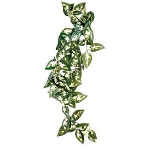 """Plante tissu """"Borneo Silk Vine"""" Komodo"""