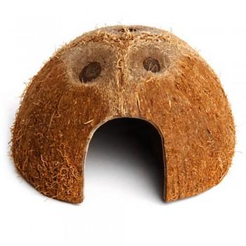 """Abri noix de coco """"KOMODO"""""""