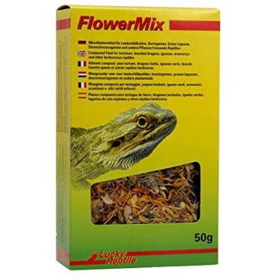 """Mélange de fleurs """"Flower Mix"""""""