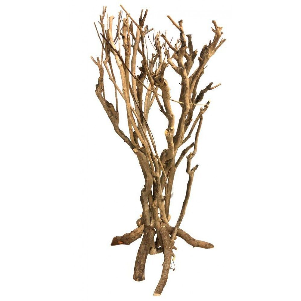Arbuste de savanne 40cm - Lucky Reptile