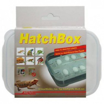 "Boite d'incubation ""HatchBox"" - Lucky Reptile"