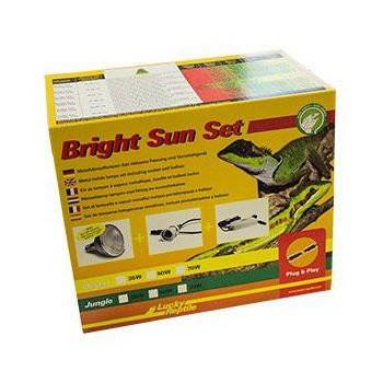 """Set """"Bright Sun """" LUCKY REPTILES"""