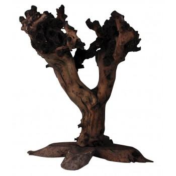 Arbre en bois de vigne  50cm env Lucky Reptile