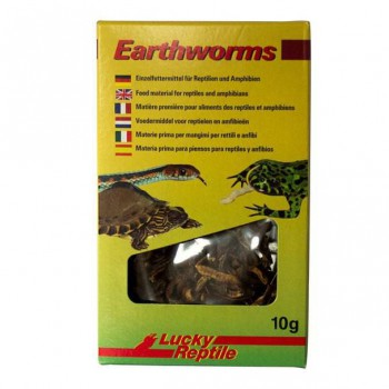 """Vers de terre séchés """"Eathworms"""" Lucky reptile"""