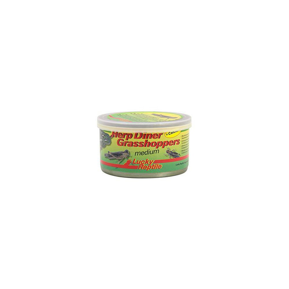 Nourriture pour insectivore Herp Diner Grasshoppers - Lucky Reptile