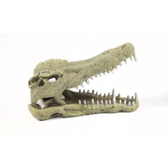 Tête de Crocodile XXL 48,5cm Terratlantis