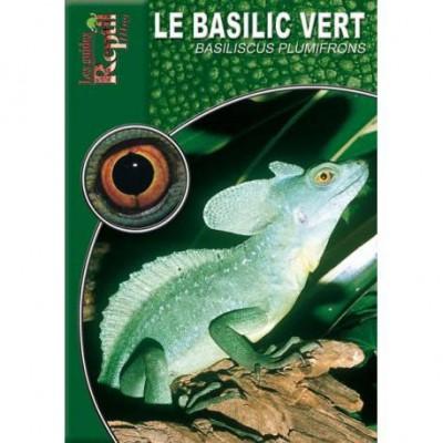 Le basilic vert- Basiliscus plumifrons- Les guides reptilmag