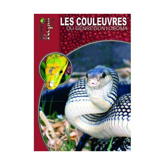 Les couleuvres du genre Gonyosoma- Les guides Reptilmag