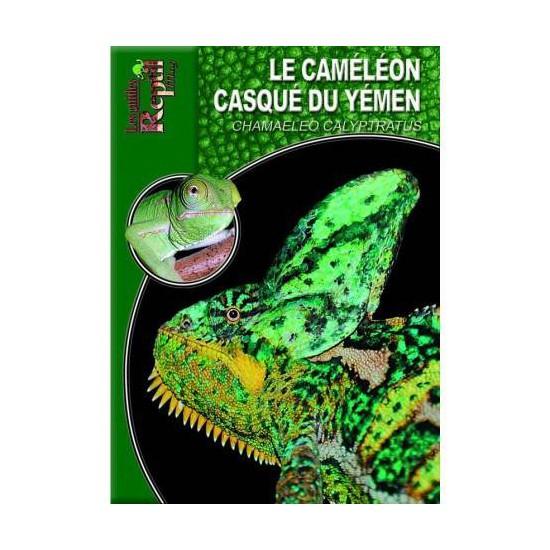 le caméléon casqué du Yemen- Chamaeleo calyptratus- Les guides Reptilmag
