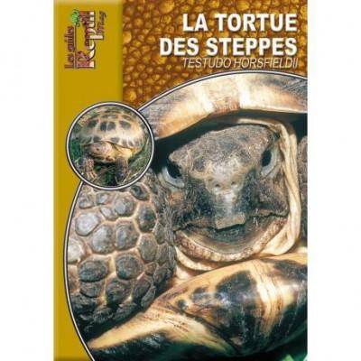 La tortue des steppes- Testudo horsfieldii- Les guides Reptilmag