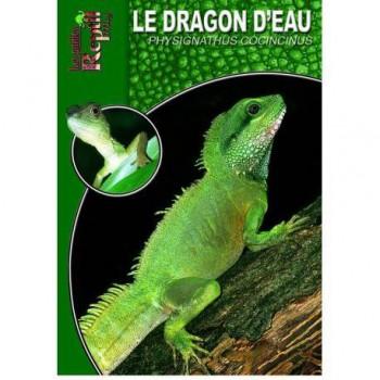 Le dragon d'eau- Physignathus cocincinus