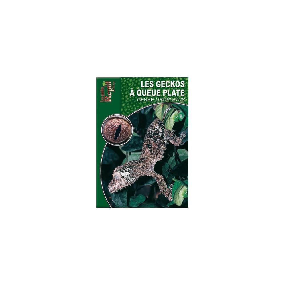 Les geckos à queue plate du genre Uroplatus- Les guides Reptilmag