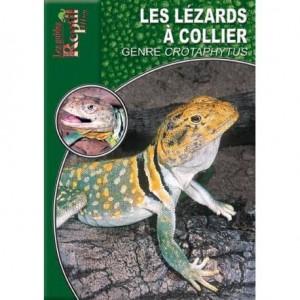 Les lézards à colier du genre Crotaphytus