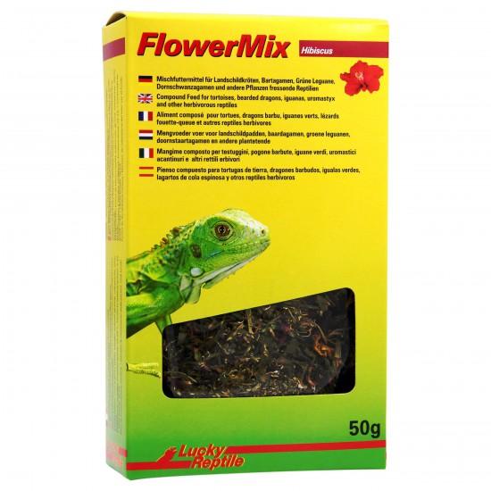 """Mélange de fleurs d'hibiscus """"Flower Mix Hibiscus"""" Lucky reptile"""