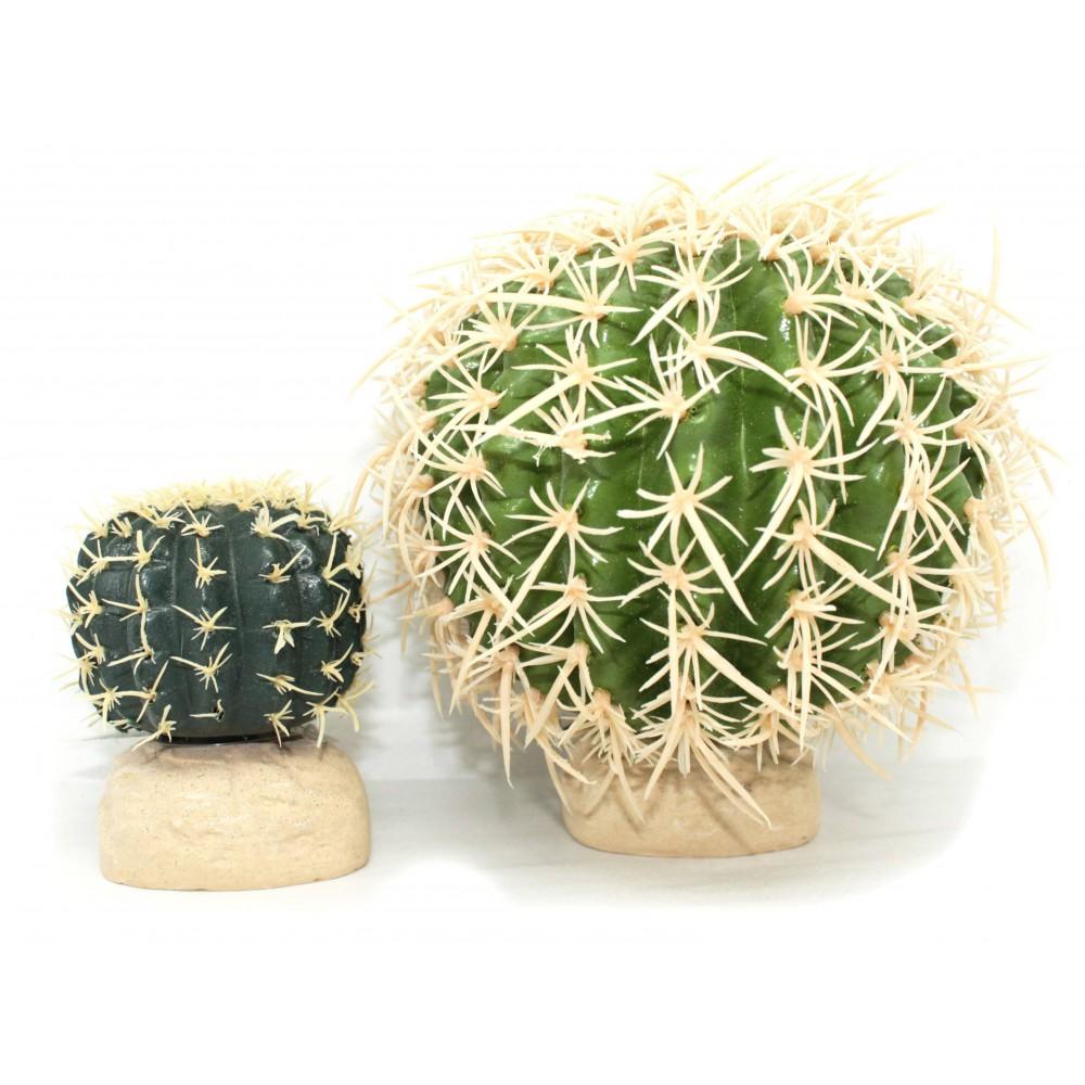 Cactus pour terrarium désertique - EXO TERRA