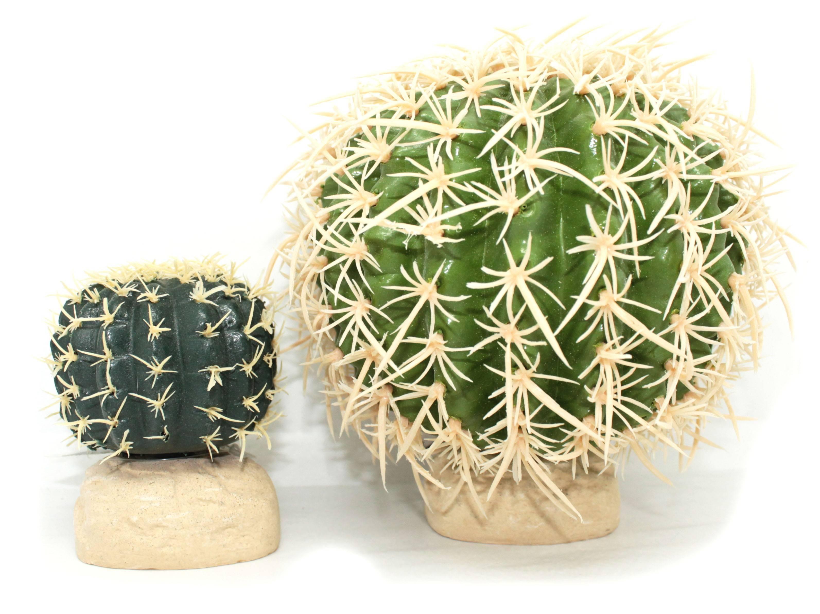 Cactus Pour Terrarium Desertique Decor Exo Terra