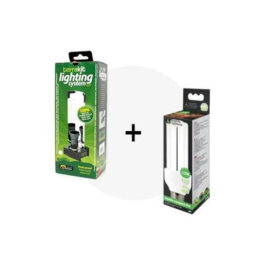 Lot UVB : Ampoule compacte à économie d'énergie + support haut rendement