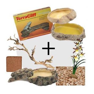 Kit décoration pour gecko léopard - Aménagement type