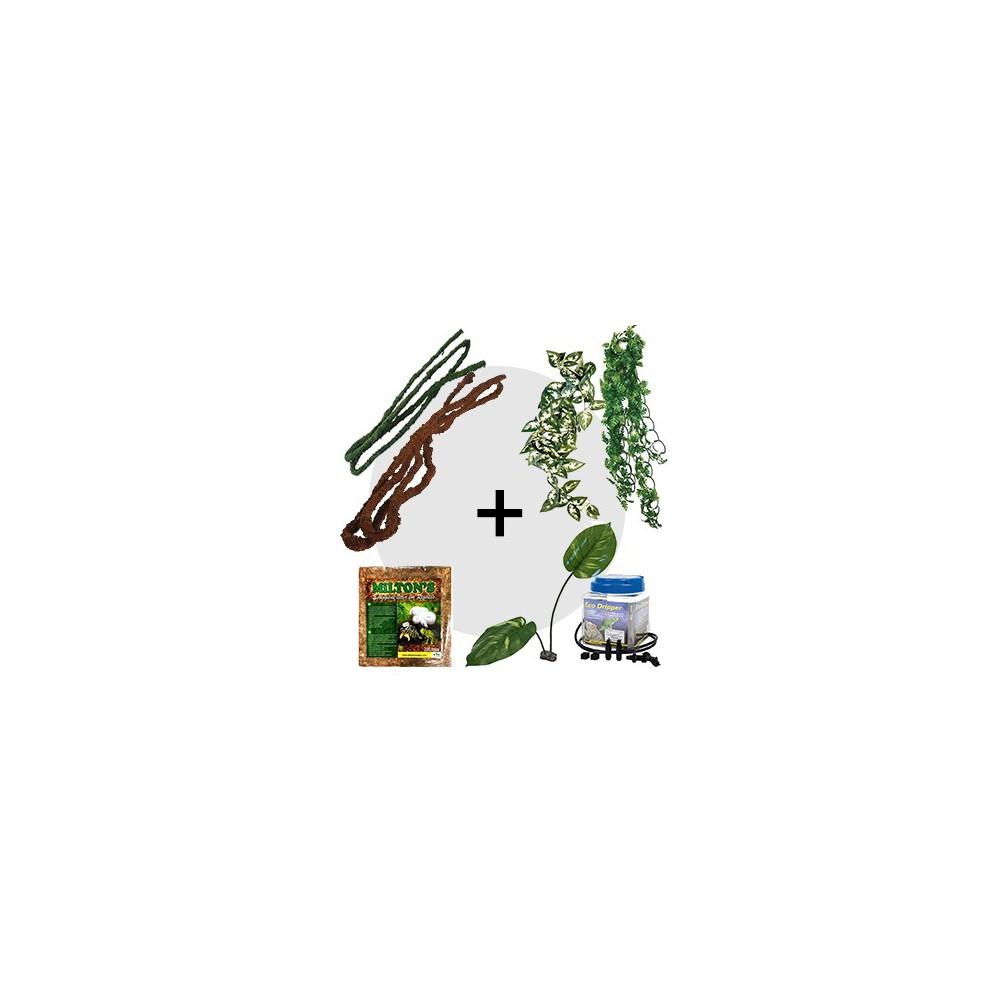 Kit Décoration pour caméléon - Aménagement