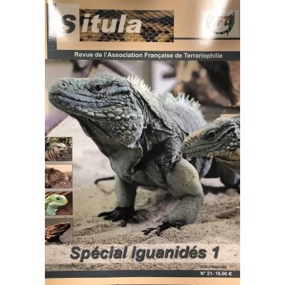 Situla n°21 : spécial Iguanidae 1 !