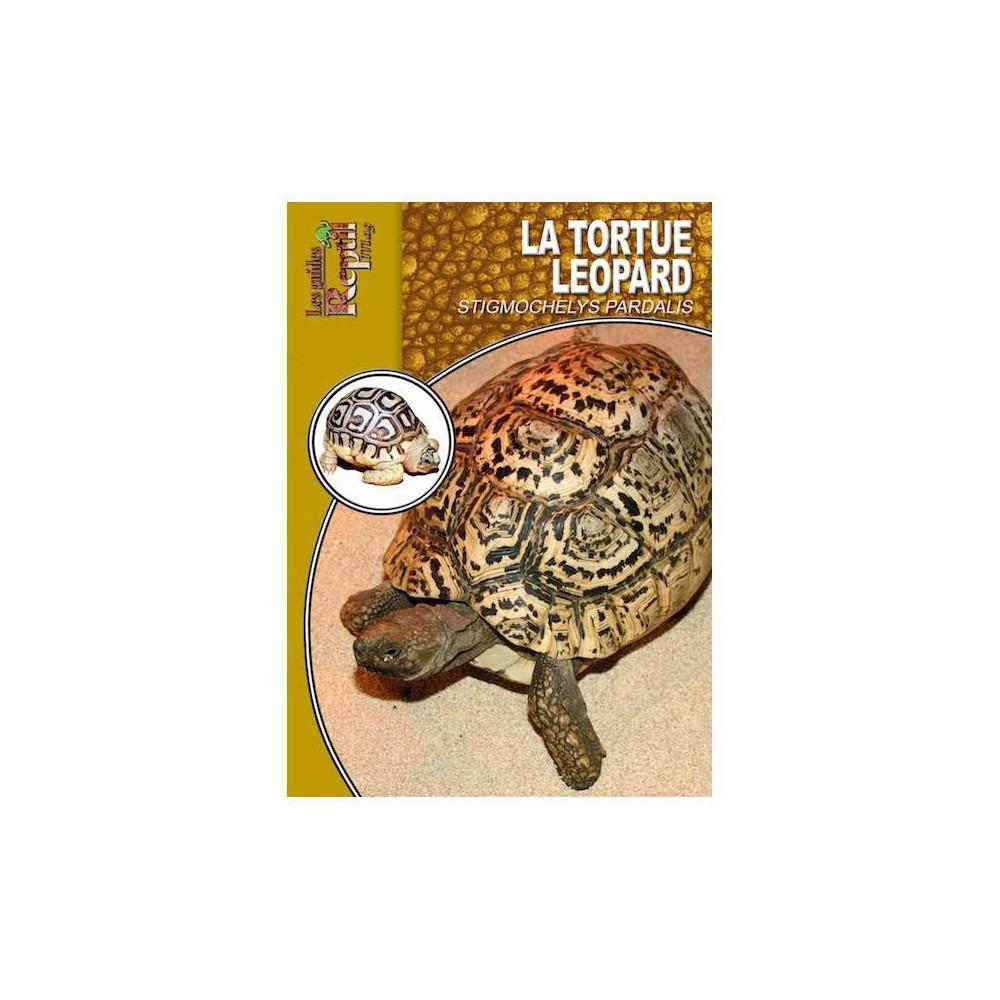 La tortue léopard- Stygmochelys pardalis- Les guides Reptilmag