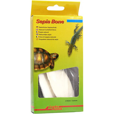 """Os de seiche """"Sepia bone"""" -..."""
