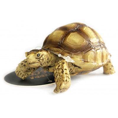 Figurine tortue sillonnée -...