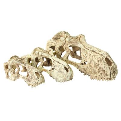 """Crâne de T-Rex """"T-REX..."""