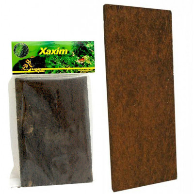 Plaque de Xaxim (fougères...