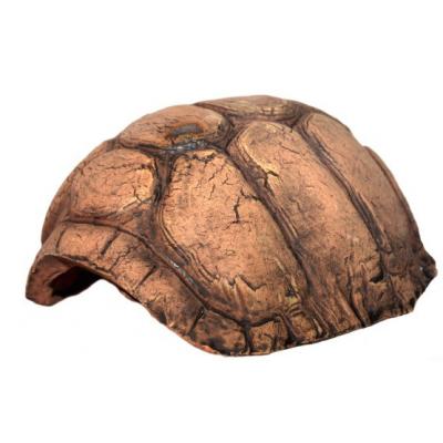 Cachette carapace de tortue...