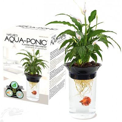 Kit jardinière aquarium...