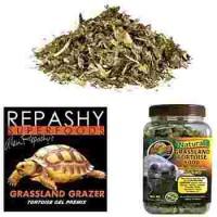 Nourriture pour tortues terrestres