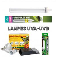 Lampes UVA-UVB pour reptile en terrarium - Bebesaurus