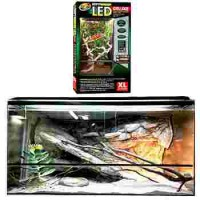 Acheter terrarium pour reptiles - tortue, serpent, gecko, Pogona - Bebesaurus
