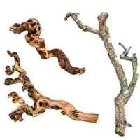 Branches, souches, racines, écorces