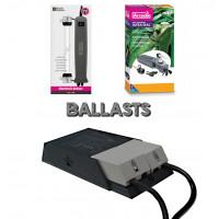 Ballasts - Bebesaurus